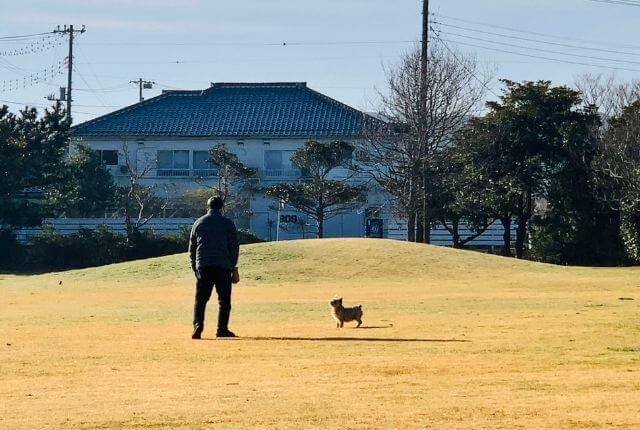 いなフリ-hinode前の公園で犬を散歩中のおじいちゃん