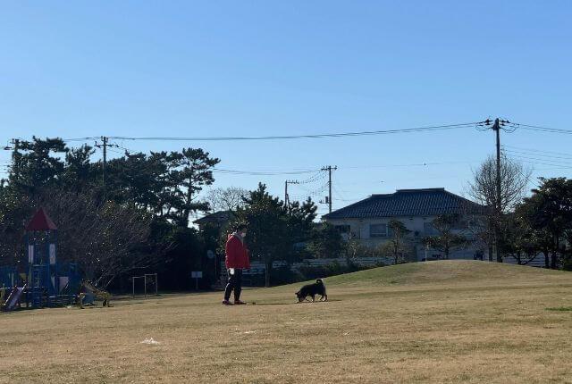 いなフリ-hinode前の公園で犬を散歩中のおばさん